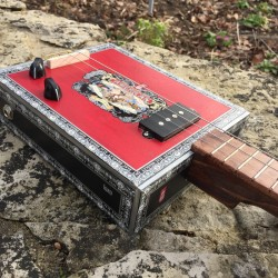 StLouis CigarboxGuitar Roots  American 3 Strings